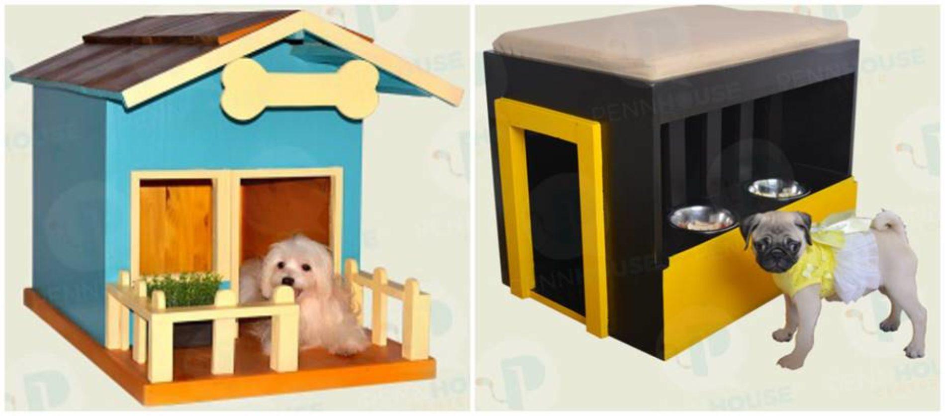 Diseños minimalistas se imponen en la decoración de ambientes para perros y gatos
