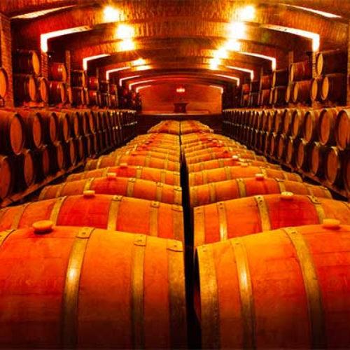 Undurraga, fue elegida por sexta ocasión entre las marcas de vino más admirada del mundo