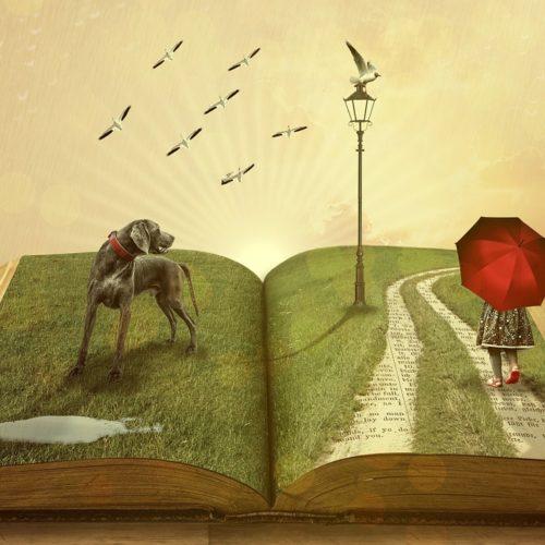 BLOG LITERARIO: FUEGO PETRIFICADO