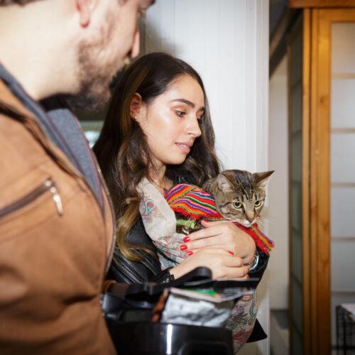 Adopción virtual de gaticos