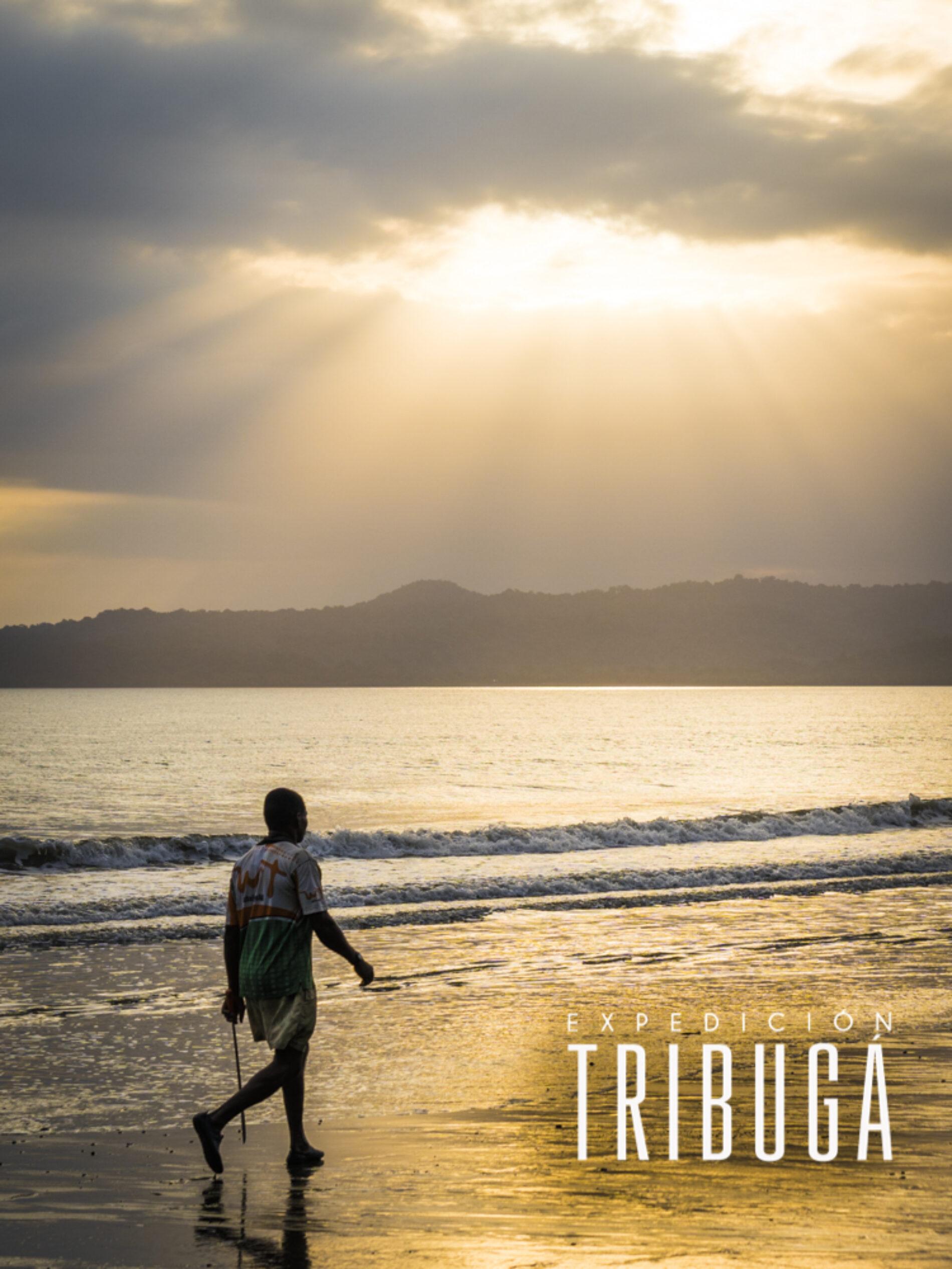 6 Razones que hacen del Golfo de Tribugá un tesoro natural en el Chocó