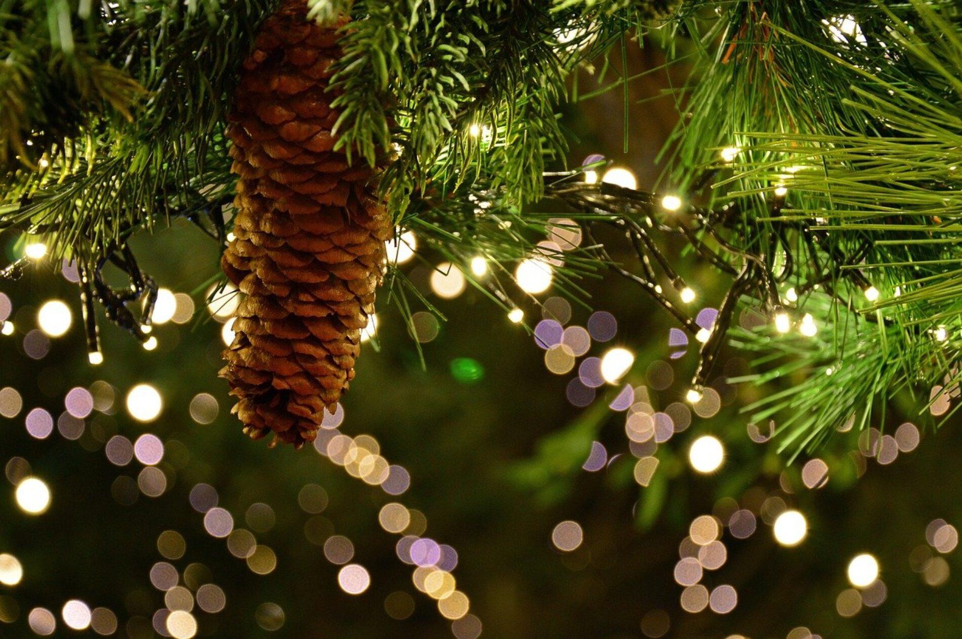 Ilumina tu navidad con productos de certificación colombiana