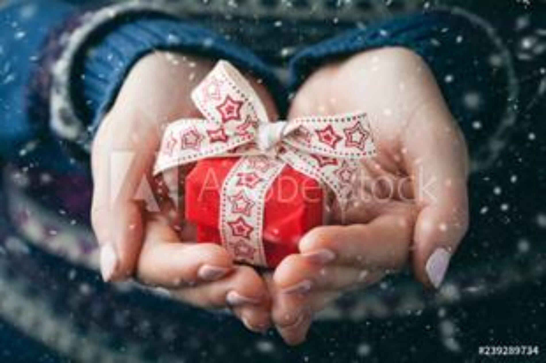 Una fiesta de integración que sumará gratitud en Navidad